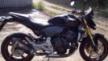 Honda CB600F Hornet 2008 - хорни