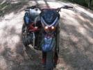 Irbis TTR125 2011 - барсик