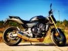 Honda CB600F Hornet 2007 - Мото