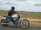 Harley-Davidson 1200 Sportster 2001 - Харлюша