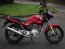 Yamaha YBR125 2010 - Ебрик