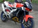 Aprilia Tuono 1000 R 2008 - мот