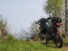Suzuki DR650 1996 - ослик