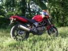 Honda VTR250 2000 - Ватрушка