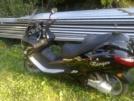 Viper TORNADO 250 2012 - аргамак)