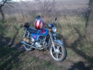 Viper ALPHA 50 2008 - DalnoBoy