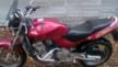Honda CB600F Hornet 1999 - жужжик