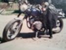 Днепр К-750 1969 - Касик