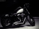 Harley-Davidson XL 1200X Sportster Forty-Eight 2011 - Бобёр