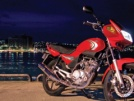 Yamaha YBR125 2011 - Друг