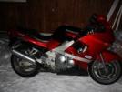 Kawasaki ZZR400 1999 - Flamme