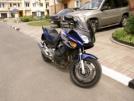 Honda CBF600 2004 - малыш