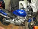 Honda CB600F Hornet 2002 - Шершень