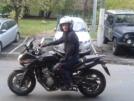 Honda CBF600 2011 - СиБиЭфа