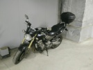Honda CB600F Hornet 2005 - Хорь