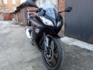 Kawasaki Ninja 300 2013 - Квака - Нина