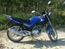 Yamaha YBR125 2006 - Селедыч