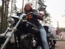 Harley-Davidson 1200 Sportster Custom 2012 - Шпрот