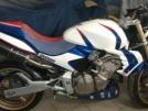 Honda CB600F Hornet 2005 - шоша