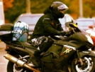 Honda CBR1100XX Super Blackbird 1998 - Дроздушка