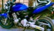 Honda CB600F Hornet 2003 - Hornet