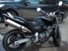 Honda CB600F Hornet 2002 - Ласточка