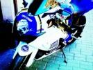 Suzuki GSX-R1000 2007 - Lucky