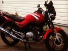 Yamaha YBR125 2007 - пони