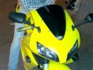 Honda CBR600RR 2005 - Пчелка
