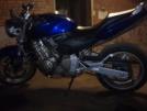 Honda CB600F Hornet 2005 - Пчёлэ