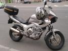 Yamaha TDM850 2000 - Голландец