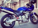 Honda CB600F Hornet 2000 - Хорёк