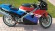 Honda VFR400R 1987 - Выфер