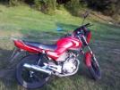 Yamaha YBR125 2007 - Моцик