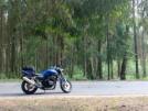 Honda CB400 Super Four 2002 - моя прелесть