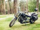 Yamaha Drag Star XVS 400 2000 - Рысь