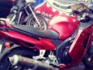Honda CBR1100XX Super Blackbird 1997 - дрозд