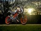 KTM 390 Duke 2014 - Duke ant