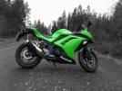Kawasaki Ninja 300 2014 - Кавочка