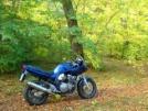 Suzuki GSF600 Bandit 2000 - Алекс
