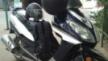 BenZhou YY150T-10D 2012 - ослик