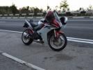 Honda CBR600F 2011 - Птичка