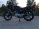Yamaha YBR125 2013 - Черныш