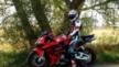 Honda CBR600RR 2004 - ДРАКОША