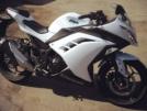 Kawasaki Ninja 300 2014 - синоби