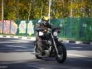 Harley-Davidson 1200 Sportster 2008 - драндулет