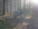 Yamaha TDR125R 2005 - Кузнечик