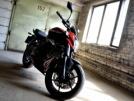 Kawasaki ER-6n 2012 - ёрш...