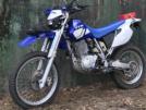 Yamaha TT600R 2001 - TTR