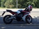Honda CBR600F 2014 - ушастик